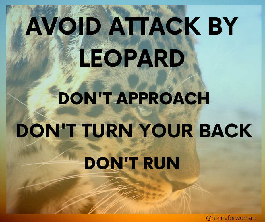 Avoid a Leopard Attack